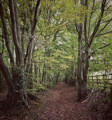 Photo of PBWA Chorleywood