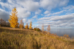 Autumn on Lake Ilmen (gubanov77) Tags: autumn nature october russia lake lakeilmen korostyn ильмень коростынь nationalgeographic trees landscape
