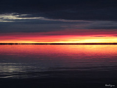 Morning sky - Ciel du matin (monteregina) Tags: dawn sunrise file:name=nb201711015205 fierysky canada québec water eau colors couleurs montérégie ottawariver suroît rivièredesoutaouais reflets reflections ripples waterfront leverdusoleil monteregina place waterscape borddeleau riveside vue view sonnenaufgang leverdesoleil viertel soleil sunshine morninglight lumièredumatin réflexion refletsdansleau ciel sky nuages clouds 0range matin morning reflection reflexion réflection soleillevant daybreak aube vividsky bandsofcolors bandesdecouleurs
