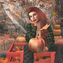 Good Thing (Arwen Clarity) Tags: autumn fall leaves pumpkins wagon pose secondlife second life redhead braid focus tresblah vinyl stealthic kunglers amias