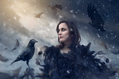 Winter Burns ({jessica drossin}) Tags: jessicadrossin woman face birds ravens sky clouds light mystery fantasy dark feathers cold winter surreal flying crows black halloween creepy wwwjessicadrossincom macabre