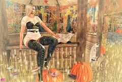 Looking Forward To Your Return (alexandra sunny) Tags: adorsy empowered posefair catwa maitreya aviglam littlebones secondlife blog blogger fashion female woman backdrops cat