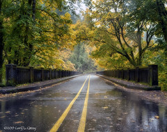 Latourell Bridge on the Historic Columbia River Highway, Oregon (Gary L. Quay) Tags: latourellfalls columbiagorge oregon waterfall pacificnorthwest hcrh nikon garyquay green trees autumn fall fallcolors ortoneffect historiccolumbiariverhighway nik rain