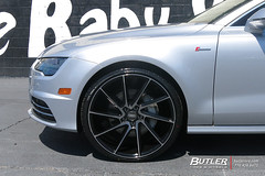 Audi A7 with 22in Savini BM15 Wheels (Butler Tires and Wheels) Tags: audia7with22insavinibm15wheels audia7with22insavinibm15rims audia7withsavinibm15wheels audia7withsavinibm15rims audia7with22inwheels audia7with22inrims audiwith22insavinibm15wheels audiwith22insavinibm15rims audiwithsavinibm15wheels audiwithsavinibm15rims audiwith22inwheels audiwith22inrims a7with22insavinibm15wheels a7with22insavinibm15rims a7withsavinibm15wheels a7withsavinibm15rims a7with22inwheels a7with22inrims 22inwheels 22inrims audia7withwheels audia7withrims a7withwheels a7withrims audiwithwheels audiwithrims audi a7 audia7 savinibm15 savini 22insavinibm15wheels 22insavinibm15rims savinibm15wheels savinibm15rims saviniwheels savinirims 22insaviniwheels 22insavinirims butlertiresandwheels butlertire wheels rims car cars vehicle vehicles tires