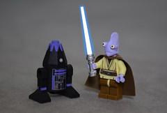 R4-D12 & Bivall Jedi
