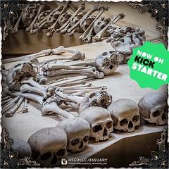 ☩💀 Click link in BIO for our current Kickstarter. 💀☩ ☩💀 Mailing list: https://ift.tt/2lTYHHU 💀☩ . . . . . . #SedlecOssuaryProject #SedlecOssuary #Sedlec #bonechurch #KutnaHora #skulls #UNESCO #creepy #ossuary #Prague #CzechRepublic (Sedlec Ossuary Project) Tags: sedlecossuaryproject sedlec ossuary project sedlecossuary kostnice kutnahora kutna hora prague czechrepublic czech republic czechia churchofbones church bones skeleton skulls humanbones human mementomori memento mori creepy travel macabre death dark historical architecture historicpreservation historic preservation landmark explore unusual mechanicalwhispers mechanical whispers instagram ifttt