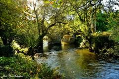 Soleil d'octobre - Le Steïr (jean-paul Falempin) Tags: nature rivière rusruisseaurivière le steïr bretagne finistère