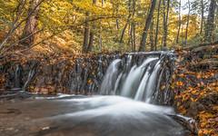 Szalajka valley waterfall (Torok_Bea) Tags: nemzetipark szilvasvarad ősz vízesés szilvásvárad color beautiful sigma nikon natur nature szalajkavölgy hungary bükkhegység bükkmountain nationalpark nikond7200 nikond nikon1680 naturlover wonderful amazing awesome autumn lovely lovenatur colours october hoya hoyandfilter ndfilter