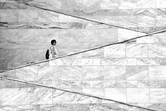 Z (Osruha) Tags: santander cantabria cantàbria españa espanya spain palaciodefestivales festivalpalace palaudefestivals escaleras escales stairs zigzag edificio edifici building blancoynegro blancinegre blackandwhite bw bn bnw monocromo monocrom monochrome