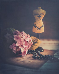 Black pearls (Ro Cafe) Tags: stilllife romantic feminine shabby darkmood pearls black flower hydrangea vintagelens helios442 textured naturallight sonya7iii