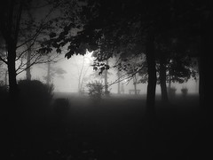 Foggy evening (wojciechpolewski) Tags: fog foggyweather foggynight evening nightlights nightphoto streetexplorer streetsnap streetlamp streetlights urban urbanexplorer citylights poland wpolewski photo photos blackandwhite blanconegro blackwhite schwarzweis