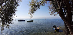 Calm autum day (borisnaumoski) Tags: ohrid macedonia lake boats sunny october autumn tree nature