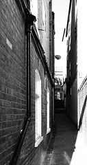 (phil da greek) Tags: uk northyorkshire scarborough