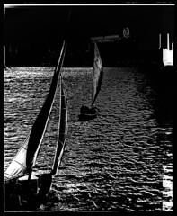 4x5-148-58 (ndpa / s. lundeen, archivist) Tags: nick dewolf nickdewolf blackwhite photographbynickdewolf bw 1950s monochrome blackandwhite film 4x5 largeformat sheetfilm late1950s blackandwhiteinversion inversion boston massachusetts boat boats sailboat sailboats river charles cambridge eca electronicscorporationofamerica building buildings sign bridge charlesriver 1958