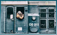 Concentration (Blaydon52C) Tags: 08911 class08 gronk shunter railway rail railways railfreight railroad trains train transport locomotive locomotives loco locomotion nrm nationalrailwaymuseum shunting blue britishrail britishrailways br shildon durham countydurham