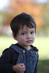 Rhoads (Andy Ziegler) Tags: boy outdoors portrait cute fun toddler overalls hair eyes autumn fall canon6d tamron70200mm
