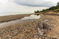 Rocks and Reflection (Tom Gill.) Tags: beach lake lakemichigan greatlakes indiana driftwood stream water