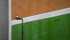 Lonely lamp post (Theen ...) Tags: 2018 highrise hongkong orange theen green lamppost concrete lumix shatin wall residential flats paint