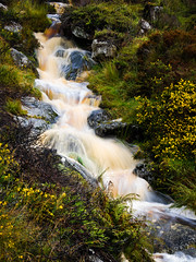 Flowing Stream Wicklow Sept 2019 (kckelleher11) Tags: 2019 40150mm ireland olympus september em1 f28 flowing mzuiko omd stream water wicklow