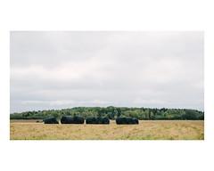 saint-gédéon (Mériol Lehmann) Tags: landscape forest drain fields canada rural quebec lacstjean pipes saintgédéon