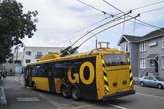 Brooklyn Road - Wellington (andrewsurgenor) Tags: trolleybuses trolleybus trolleycoach trolleybuswellington trolebús trolejbusowy trolejbus wellingtontrolleybuses newzealandtrolleybuses filobus obus nzbus gowellington