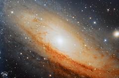 Andromeda's Core (Cristian FD) Tags: andromeda telescope ccd centergalaxy galaxys stars skywatcher sensor ccdsensor
