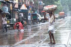 Life in Monsoon (Karunyaraj) Tags: rain umbrella monsoon kolkatta westbengal india indian worker morning dawn drizzling nikon24120 d610 cwc cwc742