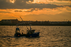 Homeward bound (tonguedevil) Tags: outdoor outside seaside port harbour river sea water waves boat trawler fishing fishermen people sky cloud colour light sunlight shadows sunset