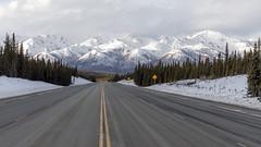 Alaska Range (mutrock) Tags: denali danalinationalpark usa unitedstates 2019 alaska ak road highway mountains trees snow