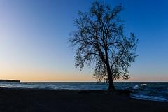 Lake Erie (Eric Tischler) Tags: huntington beach bay village ohio dusk erie