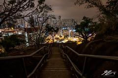 It's Way Too Late (TVZ Photography) Tags: stairs staircase trees quarryhill homantin lokmansunchuen kowloon hongkong city cityscape landscape night evening lowlight longexposure sonya7riii sony 1635mm sel1635gm