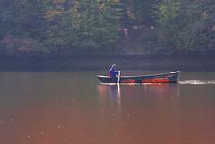 Barca pe lac (Dumby) Tags: landscape ilfov românia brănești lake water boat autumn fall colors outdoor