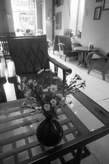 (kuuan) Tags: voigtländerheliarf4515mm manualfocus mf voigtländer15mm aspherical f4515mm superwideheliar apsc sonynex5n vietnam saigon càphê81 81cafe cafe coffeeshop retro retrostyle hip stylish antique bw flowers table flower flowerpot athmosphere vintage