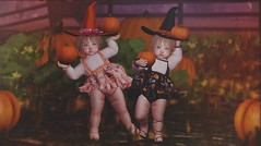 ~Witchy Picken~ (oakandnova) Tags: daisy chains toddleedoo cutebytes whippersnappers poses halloween pumpkin adorable cute babies kids toddler fun spooky playful sweet harvest fall