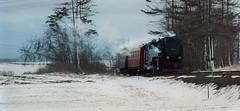 Harz recent history. (gearlok) Tags: germany harz deutschereichsbahn