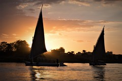 Two sailboats (Tom R Cottrell) Tags: cairo egypt nileriver felucca sailboat sunset