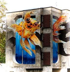 "ETIEN' - ""Le Combattant"" (Thethe35400) Tags: poisson fish pescado fisch arrain peix peixe pesciu pesce fisk ryba peşte artderue arteurbano arturbain arturbà arteurbana calle fresque grafit grafite grafiti graffiti graffitis graff mural murales muralisme plantilla pochoir stencil streetart schablone stampino tag urbanart wall anamorphose anamorphosis"