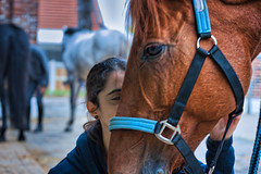 Horseriding lessons (jeromedelaunay_paris) Tags: equestrians equestrian equine equitation beautiful colors kiss love friend girl animals animal nature horseriding riding rider cavaleries cavalero caballos caballo chevaux cheval horses horse