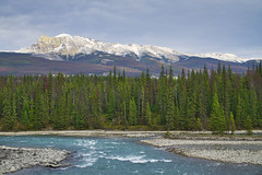 Mt. Tekarra (Bernie Emmons) Tags: athabasca river blue mountains jaspernationalpark jasperalberta mttekarra