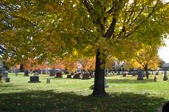 Peaceful Autumn scene (novice09) Tags: trees cemetery sooc