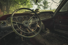 Decaying Steering Wheel (Some Place Only We Know) Tags: auto car lenkrad steering wheel spinnennetz spider web decay verfall urbex lost abandoned verlassen old urban eploration