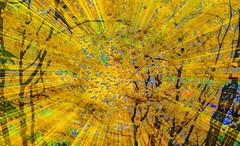 Autumn Days (soniaadammurray - On & Off) Tags: iphone manipulated experimental abstract lightroom photoshop autumn colours beauty look appreciate shadows reflections exterior artchallenge spotlightyourbestgroop picmonkey