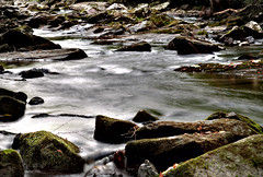 Little River- Smoky Mountains Fuji XT10 18-55mm (ToddGraves2) Tags: