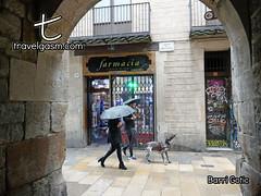 Barri Gotic (travelgasm) Tags: travelgasm travel barcelona catalonia spain ciutatvella oldcity gothicquarter barrigotic barriogotico barcino historicquarter umbrellas farmacia pharmacy stonestreet