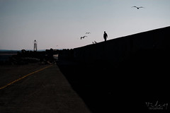 Essaouira waterfront (Tilemachos Papadopoulos) Tags: qoq winter wet wall essaouira fujifilm fuji fujinon outdoor contrast sky street structure sea shadow diagonal dusk xe2 colour vanishingpoint mirrorless