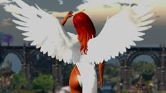 Won't need this anymore (Myra Wildmist) Tags: secondlife sl myrawildmist virtualart virtualphotography virtualworlds halo angel wings