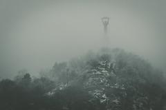 Budapest lights (Le tigre de Siberie) Tags: budapest hungary city mist fog desaturated