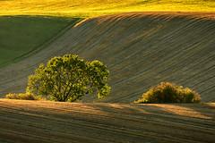 Sunset in Turiec region