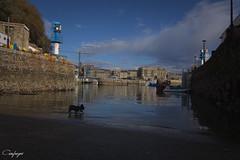Desde el puerto...279/365 (cienfuegos84) Tags: puerto donosti san sebastian mar ciudad city