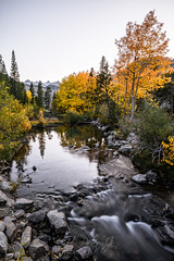 Serene (ScorpioOnSUP) Tags: bishop california easternsierra lakesabrina sierranevada sonya7iii sonyalpha adventure aspens creek fallcolors fallfoliage geology goldenhour lake landscape landscapephotography longexposure mountains nature outdoors pinetrees pines reflections seekingsolitude solitude tranquility